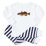 Toothfish (Sea Bass) fish (Annas Antarctica) Body
