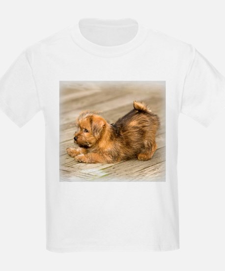 Playful Norfolk Terrier Pup Kids T-Shirt
