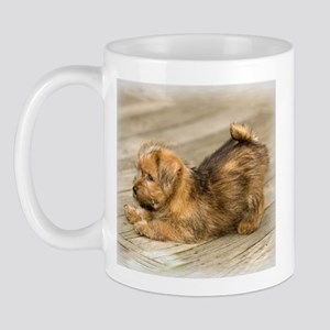 Playful Norfolk Terrier Pup Mug