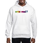 Rainbow GOT ASL? Hooded Sweatshirt
