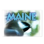 Maine Chickadee Postcards (Package of 8)