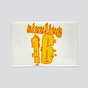 Hot 16th B-day Gifts Rectangle Magnet