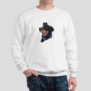 Sweatshirt (black & rust min-pin)