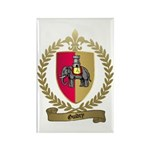 GUIDRY Family Crest Rectangle Magnet (10 pack)