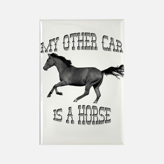 My Other Car Is A Horse Rectangle Magnet (100 pack