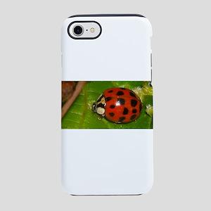 Ladybug on Leaf iPhone 7 Tough Case