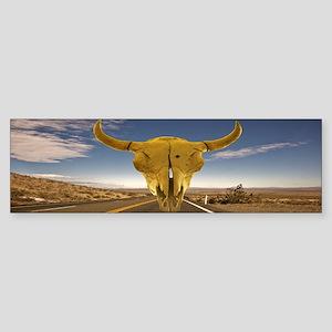 Desert Highway Bumper Sticker
