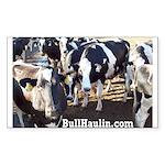 Bull Haulers Association Rectangle Sticker