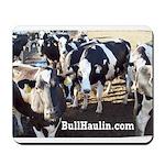 Bull Haulers Association Mousepad