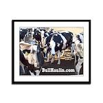 Bull Haulers Association Framed Panel Print