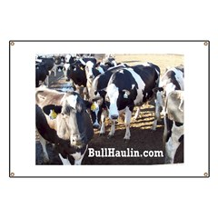 Bull Haulers Association Banner