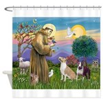 St Francis - 2 Bull Terriers Shower Curtain