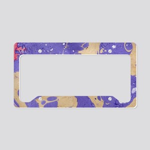 Marble Pattern License Plate Holder