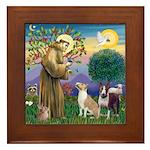 St Francis-2 Bull Terriers Framed Tile