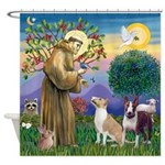 St Francis-2 Bull Terriers Shower Curtain
