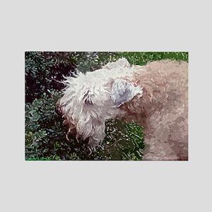 Wheaten Terrier Rectangle Magnet