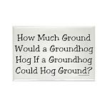 Groundhog Rectangle Magnet (100 pack)