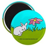 Shy Bunny Magnets