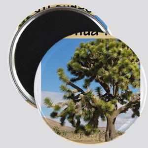Joshua Tree National Park (Ve Magnets