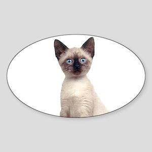 Siamese Sticker (Oval)