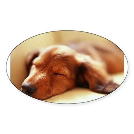 Red Long Hair Oval Sticker