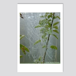 Morning Spiderweb Postcards (Package of 8)