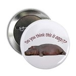 "Hippo 2.25"" Button (10 pack)"