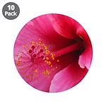 "Pink hawaiian hibiscus flower3.5"" Button (10"