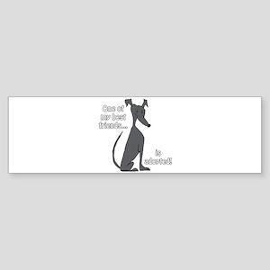 Adopted ~ Black Bumper Sticker