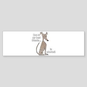 Adopted ~ Brindle Bumper Sticker