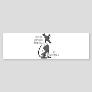 Adopted~Black&White Bumper Sticker