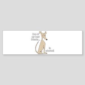Adopted~Fawn Bumper Sticker