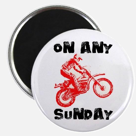 ON ANY SUNDAY Magnet