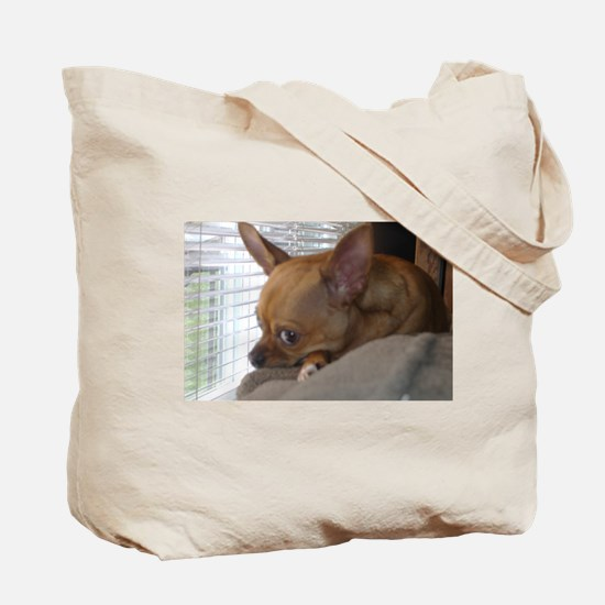 Cute Grey chihuahua Tote Bag