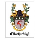 O'Dochartaigh Coat of Arms Small Poster