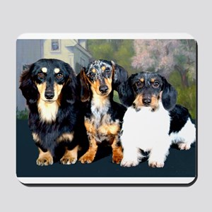 Sweet Doxie Group Mousepad