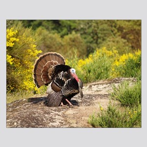 Turkey Gobbler Strut Small Poster