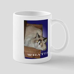 What!!? Mugs