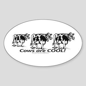 Cows Rule Oval Sticker