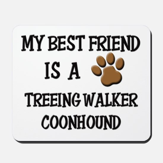 My best friend is a TREEING WALKER COONHOUND Mouse