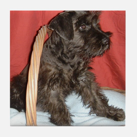 Black Miniature Schnauzer Tile Coaster
