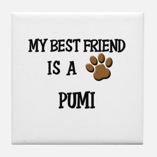 My best friend is a PUMI Tile Coaster