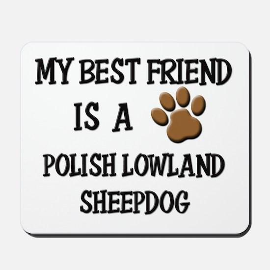 My best friend is a POLISH LOWLAND SHEEPDOG Mousep