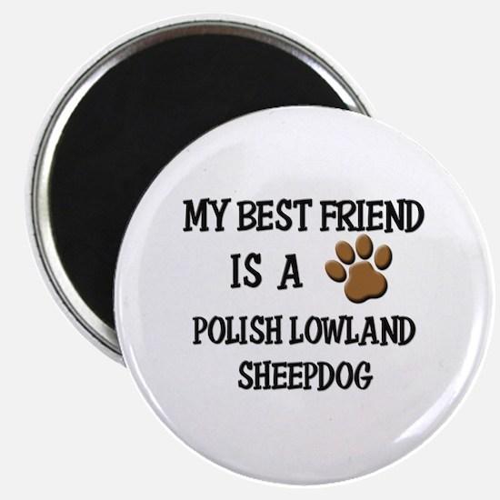 My best friend is a POLISH LOWLAND SHEEPDOG Magnet