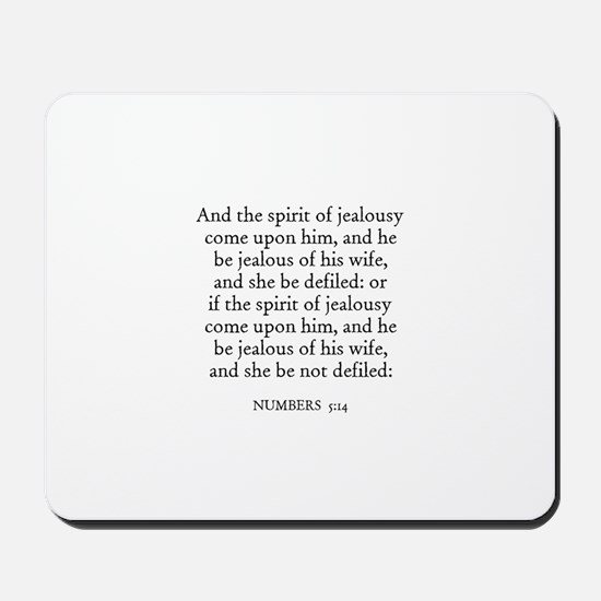 NUMBERS  5:14 Mousepad