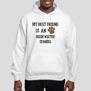 My best friend is an IRISH WATER SPANIEL Hooded Sw