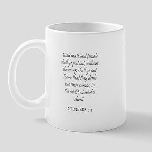 NUMBERS  5:3 Mug