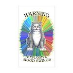 Explosive Mood Rectangle Sticker