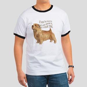 happy norfolk terrier Ringer T