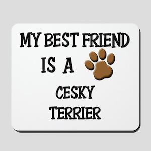 My best friend is a CESKY TERRIER Mousepad